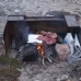 Cooking on an open fire in Nunavut