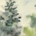 The Kyyiv's Fir Trees