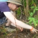 Helping the Reforestation Team plant seedlings.