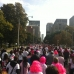 Toronto Breast Cancer Run/Walk