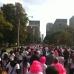 Toronto Breast Cancer Run/Walk